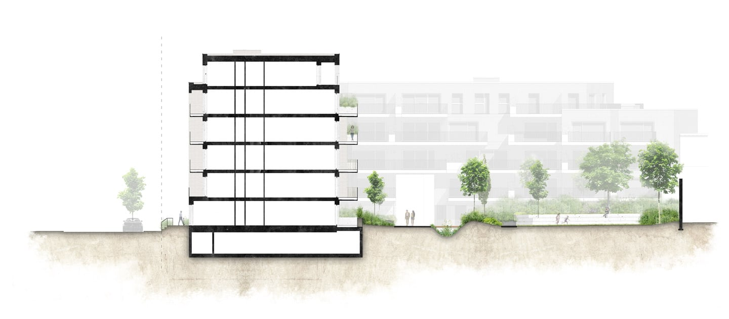 Project and landscape intervention section image