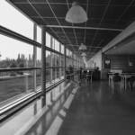 The glazed curtain providing natural light to all indoor teaching units